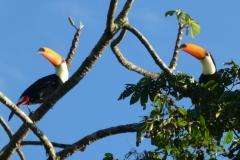 Iguazu©PapiyaPaul6