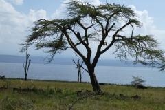 Kenya©PapiyaPaul16