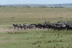 Kenya©PapiyaPaul28