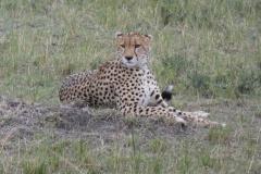 Kenya©PapiyaPaul36