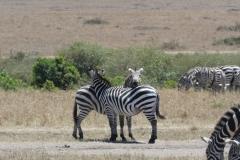 Kenya©PapiyaPaul37
