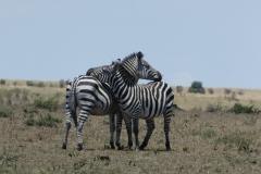 Kenya©PapiyaPaul39