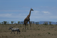 Kenya©PapiyaPaul40
