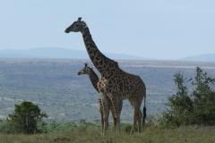 Kenya©PapiyaPaul41